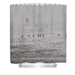 Geese During The Snow Storm Shower Curtain