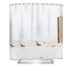 Geese In The Snow With Silo Shower Curtain by James BO  Insogna