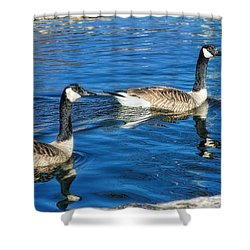 Shower Curtain featuring the photograph Geese by Joan Bertucci