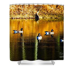 Geese On Lake Shower Curtain