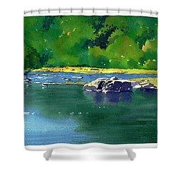 Geese On The Rappahannock Shower Curtain
