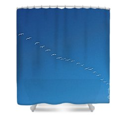 Geese On The Run Shower Curtain