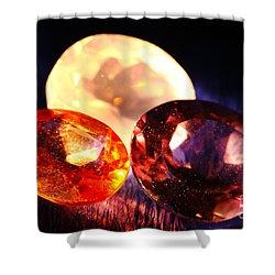 Gems Shower Curtain by Gaspar Avila