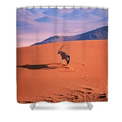 Gemsbok Shower Curtain by Eric Hosking and Photo Researchers