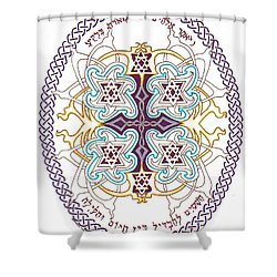 Genesis 1 14 Shower Curtain