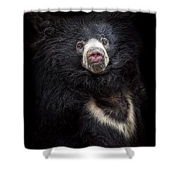 Shower Curtain featuring the photograph Gentelman by Cheri McEachin