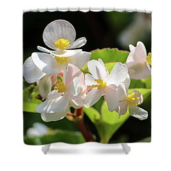 Gentle Bloom Shower Curtain