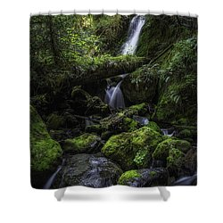 Gentle Cuts Shower Curtain by James Heckt