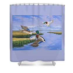 Gentle Landing Shower Curtain