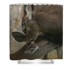 Gentle Moments Shower Curtain