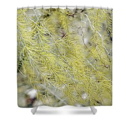 Gentle Weeds Shower Curtain by Deborah  Crew-Johnson