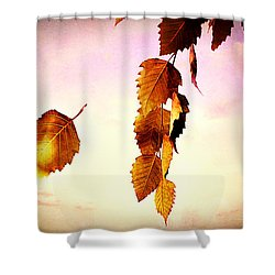 Gently September Shower Curtain by Bob Orsillo