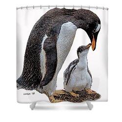 Gentoo Penguins Shower Curtain
