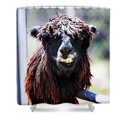 Geofery Shower Curtain by Anthony Jones