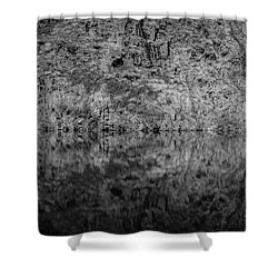 Geometries On A Mountain Lake Shower Curtain