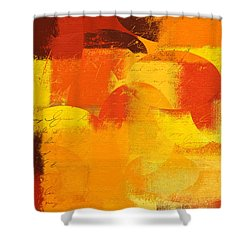 Geomix 05 - 01at01 Shower Curtain by Variance Collections