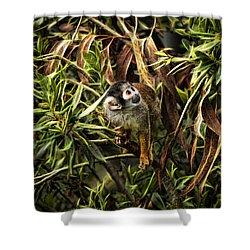 Shower Curtain featuring the photograph George by Cameron Wood