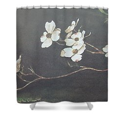 Georgia Dogwood Shower Curtain by Charles Roy Smith