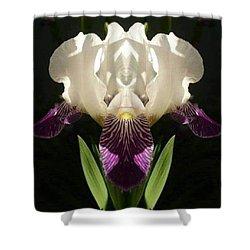 Georgia Shower Curtain
