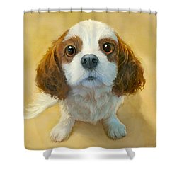 More Than Words Shower Curtain