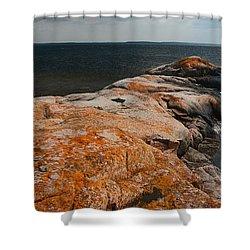 Georgian Bay Rocks Lichen-3675 Shower Curtain