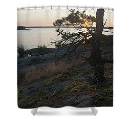Georgian Bay Sunrise-moss 4253 Shower Curtain