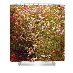 Geraldton Wax Shades Shower Curtain by Cassandra Buckley
