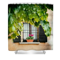 Shower Curtain featuring the photograph Geraniums On Windowsill by Silvia Ganora