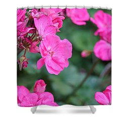 Geraniums Shower Curtain