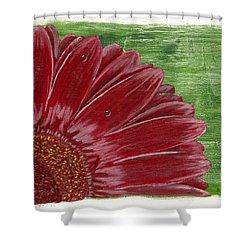 Gerber Daisy- Red Shower Curtain