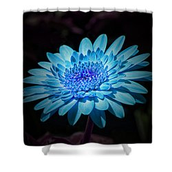 Gerbera Daisy Art Shower Curtain
