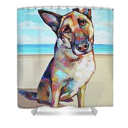 German Shepard On The Beach Shower Curtain