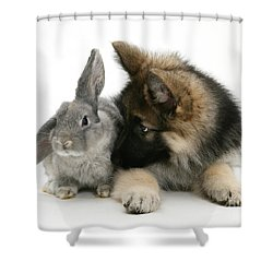 German Shepherd And Rabbit Shower Curtain by Mark Taylor