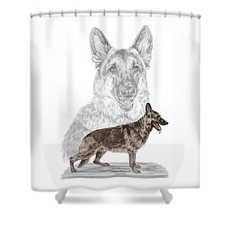 Shower Curtain featuring the drawing German Shepherd Art Print - Color Tinted by Kelli Swan