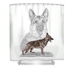 German Shepherd Art Print - Color Tinted Shower Curtain by Kelli Swan