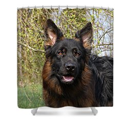 Shower Curtain featuring the photograph German Shepherd Close Up by Sandy Keeton