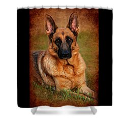 German Shepherd Dog Portrait  Shower Curtain