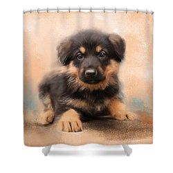 German Shepherd Puppy Portrait Shower Curtain by Jai Johnson