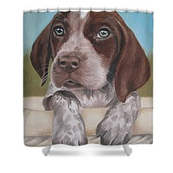 Shower Curtain featuring the painting German Shorhaired Pointer Puppy by Jindra Noewi