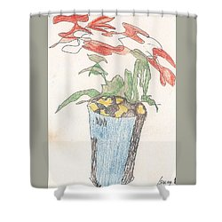 Shower Curtain featuring the drawing Gesture Drawing Of Poinsettia by Rod Ismay