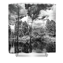 Shower Curtain featuring the photograph Getaway by Rick Furmanek