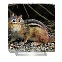 Getting Groceries  Shower Curtain