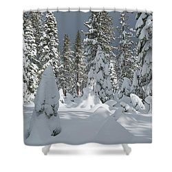 Remotely Shower Curtain