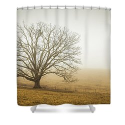 Tree In Fog - Blue Ridge Parkway Shower Curtain
