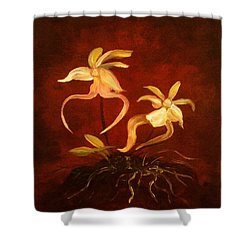 Ghost Orchids Shower Curtain