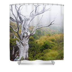 Shower Curtain featuring the photograph Ghost by Werner Padarin