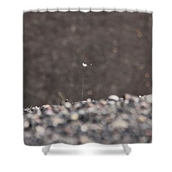 Shower Curtain featuring the photograph Ghosts In The Gravel by Suzanne Oesterling