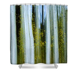 Ghosts Of Fall Shower Curtain