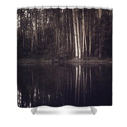 Ghosts Of My Heart Shower Curtain