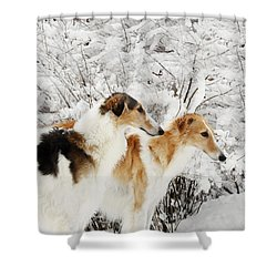 giant Borzoi hounds in winter Shower Curtain by Christian Lagereek